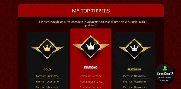 Marketerbay.com : Lorena BongaCams profile design - Top Tippers section